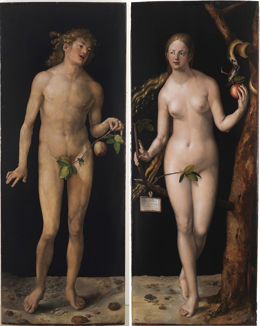 7 8 Albrecht Dürer Adam and Eve (Prado) 2
